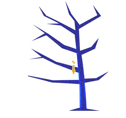 The tree in static equilibrium. The center of mass is marked to the left of the trunk.